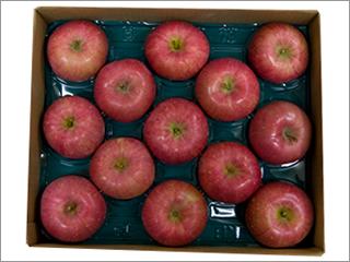 ふじりんご 26個入り(13個×2段) 青森産