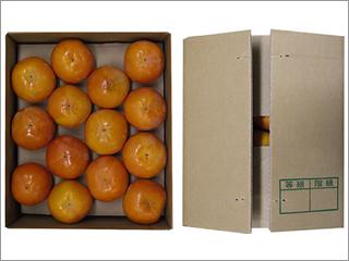 柿 2Lサイズ 7.5kg入り(14個) 奈良産