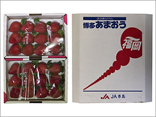 あまおう 2P入り (JA糸島・JA全農ふくれん) 福岡産